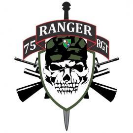 Adesivo Ranger 75 RGT